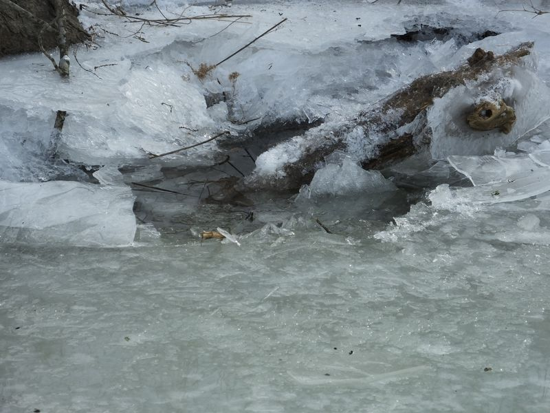 Freezing river 055